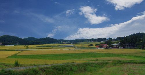 2011年秋の伊達藩領の田園風景